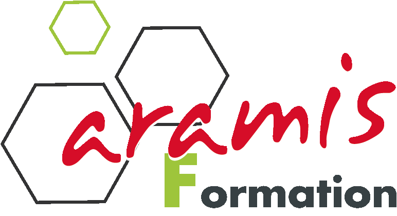 Logo Aramis Formation